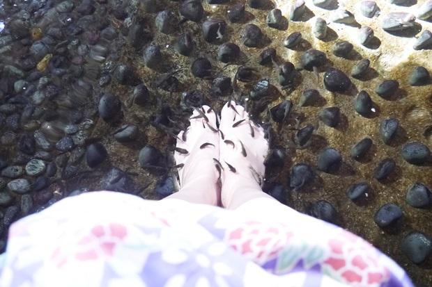 お台場大江戸温泉物語足湯の画像