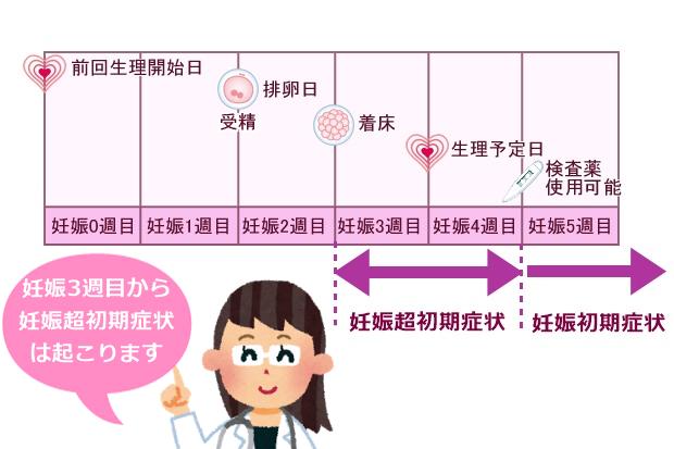排卵受精着床スケジュール一覧表