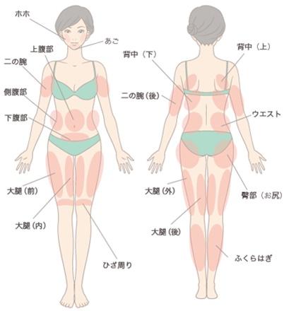 高須クリニックの脂肪吸引可能部位