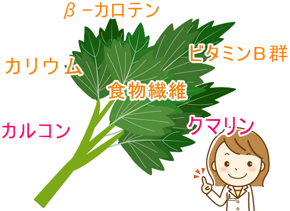 明日葉に豊富に含まれる成分