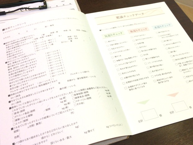 EVEの体質チェック表